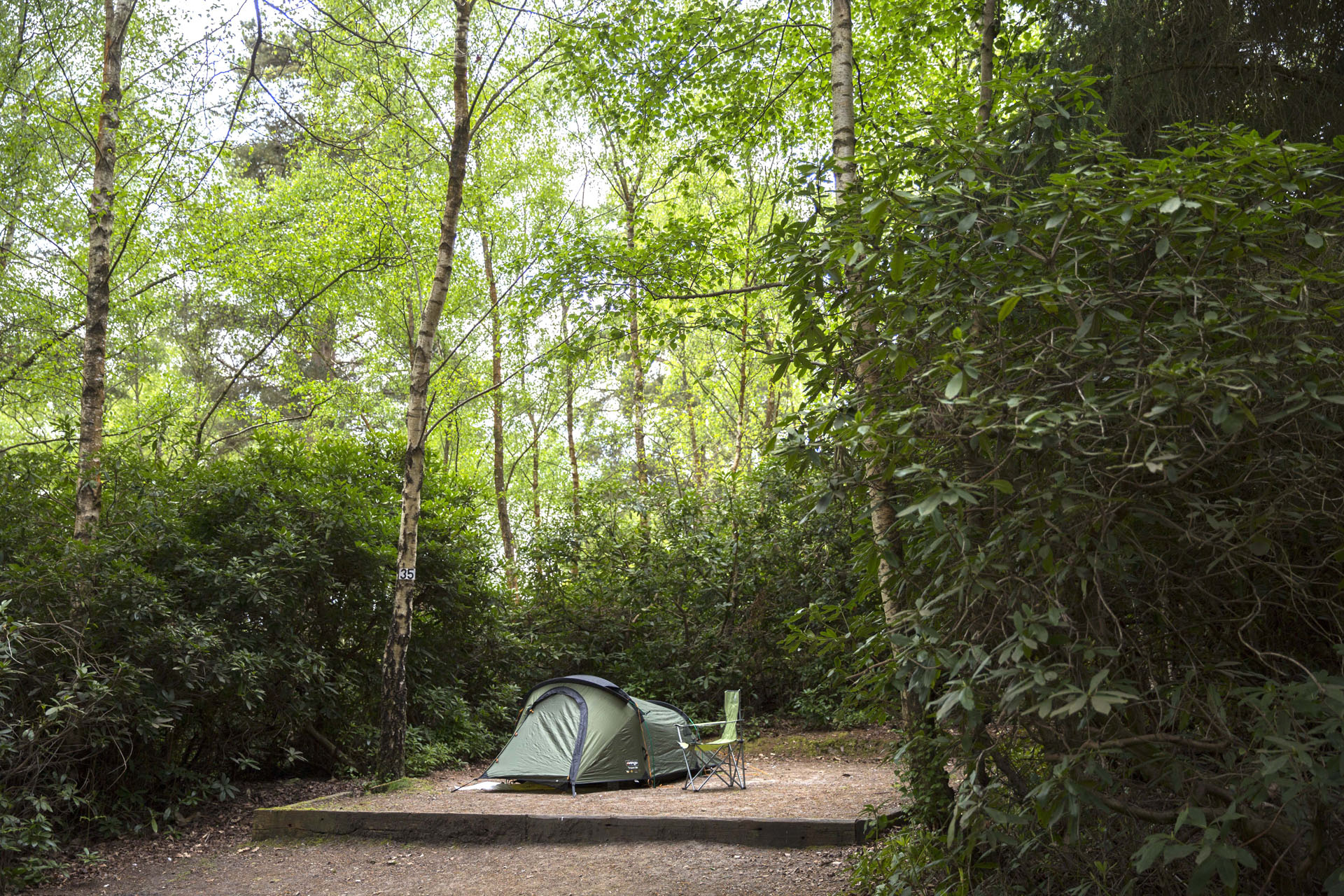 Graffham - Camping and Caravanning Club Site - The Camping