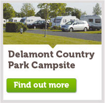 Delamont Country Park