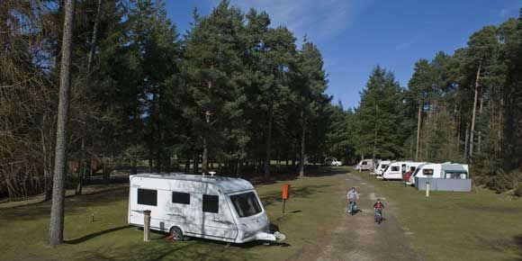 Sheltered pitches at Nairn campsite, Scotland