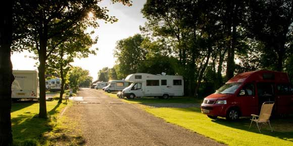 Children Spending Time in the Scenic Countryside of Delamere Forest Camp Site, Cheshire