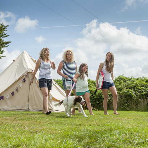 Family camping at Lynton campsite, Devon
