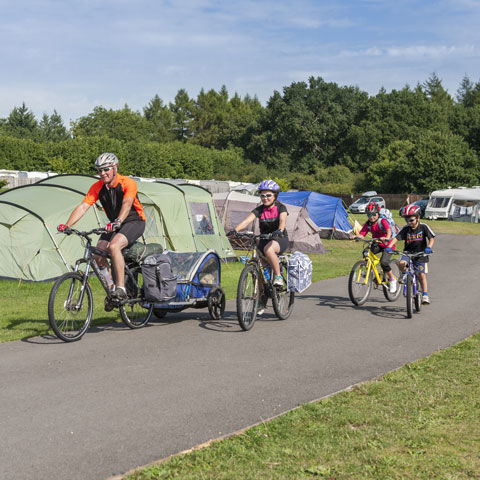 Cycling through the New Forest at Verwood campsite, Dorset