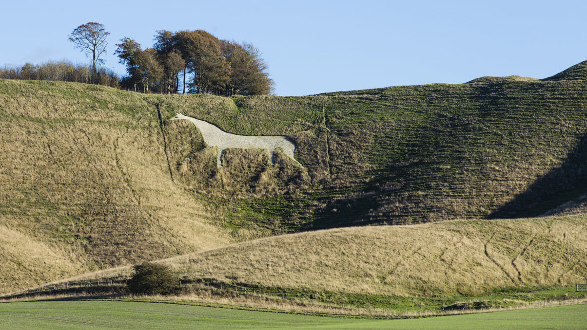 One of Britain's White Horse hill carvings
