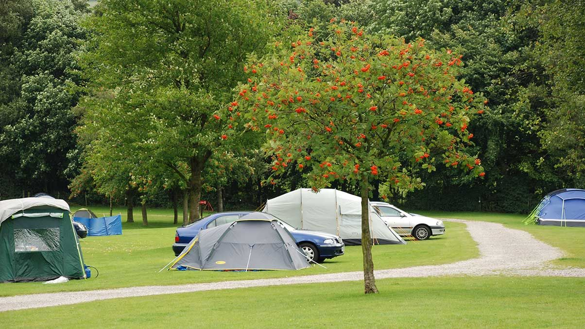 Car tourers at Haltwhistle Club Site AP