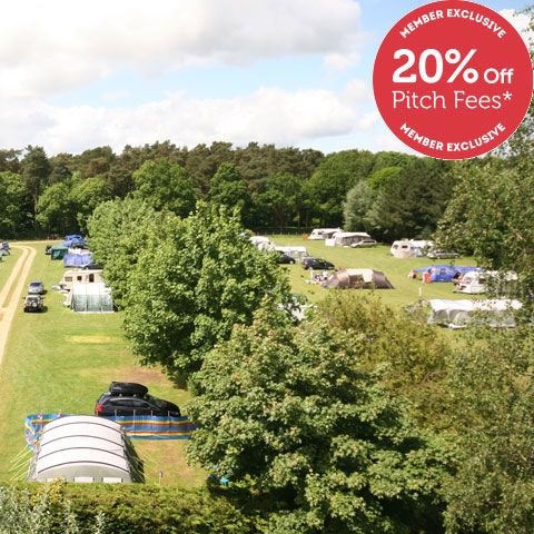Thetford Forest Campsite, campsites in Norfolk