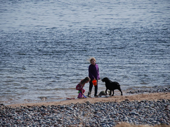 Family fun with dog on the beach