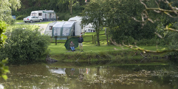 Grass pitches at Ebury Hill campsite,  camping in Shropshire