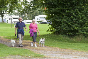 Couple out walking their dog on Wolverley Club Site