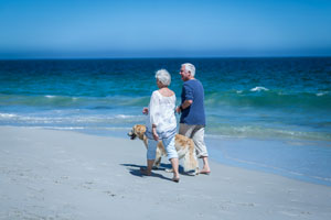 Couple walking with dog on the beach