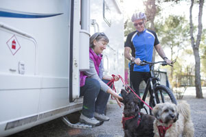 Dogs with family outside motorhome