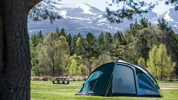 14 Fantastic reasons to camp in 2018