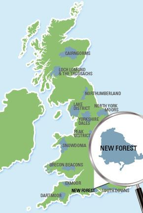 New Forest National Park Location