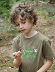 A young Elliot McGrath looks at a pine cone, a clue that a red squirrel is nearby