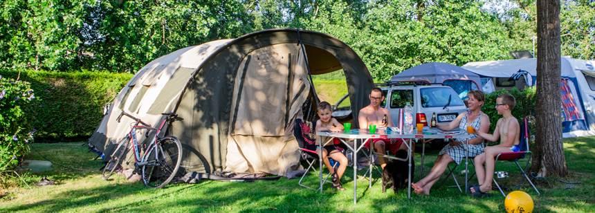 Shady pitch at Camping Larrouleta, Urrugne, France