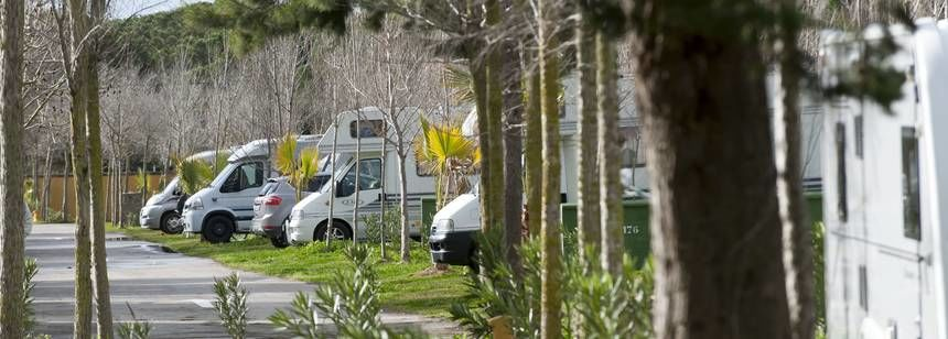 Double pitches are divided by shrubs and trees at Camping Roche, Conil de la Frontera, Costa de la Luz