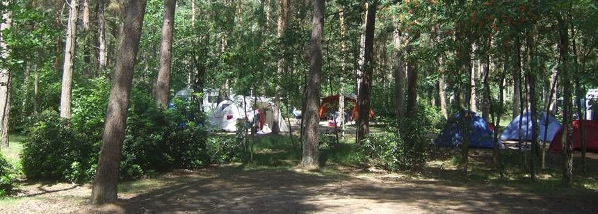 Secluded Grass Pitches in the Scenic De Lilse Bergen Campsite, Belguim
