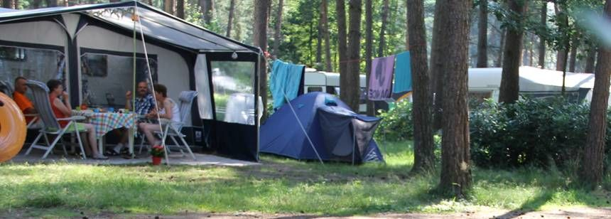 Pitches in the woods at camping de Lilse Bergen, Lille-Gierle, Belgium.