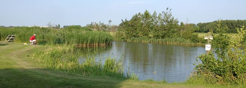 The well-stocked fishing lake at Camping Koningshof, Rijnsburg, The Netherlands