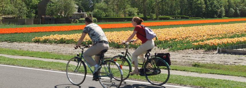 Great cycling near Camping Koningshof, Rijnsburg, the Netherlands