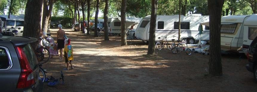 Shaded Grass Pitches at the Ca'Savio Campsite, Italy