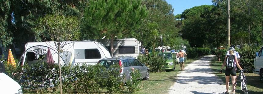 Secluded Grass Pitches at the Park Albatros Campsite, Italy