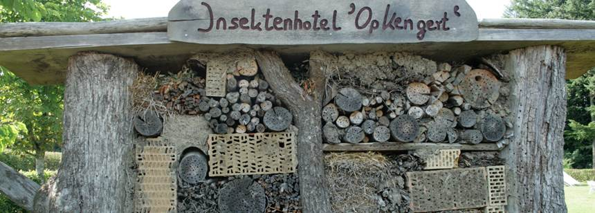 The 'Insect Hotel' bug barn at Camping Auf Kengert, Larochette, Luxembourg