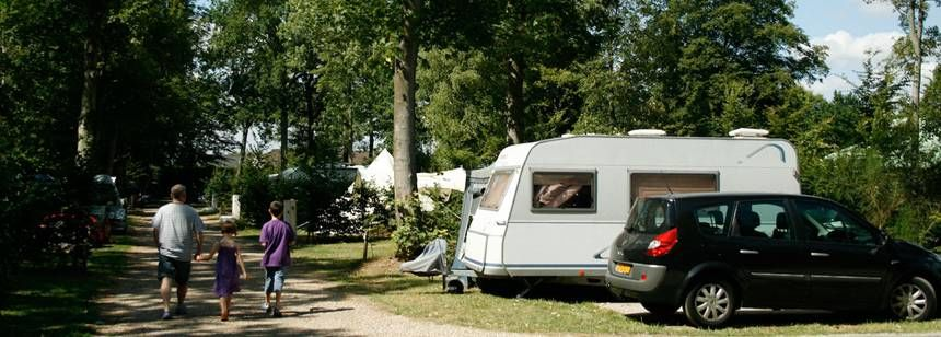 Shadedshaded Grass Pitches at the De La Forêt Campsite, France