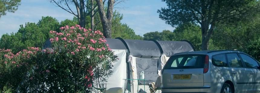 Shaded Grass Pitches at the Pins Parasols Campsite, France