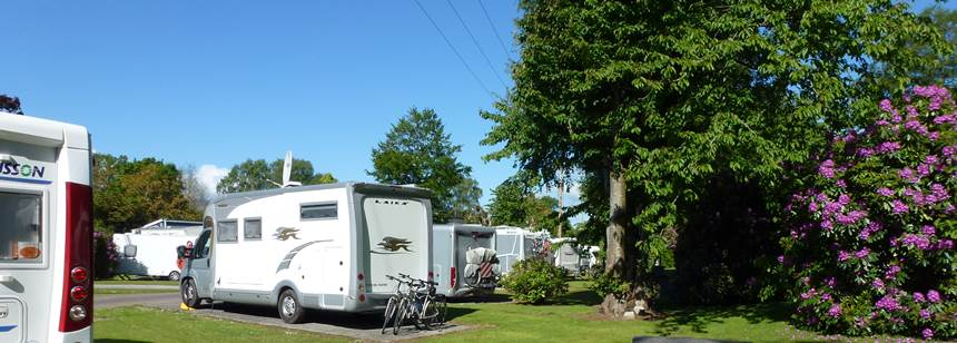 Pitches at Fossa Caravan and Camping Park, Killarney, Co. Kerry, Ireland