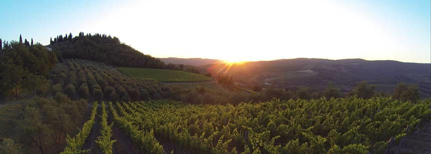 Sunsets over the vineyards around Camping Orlando in Chianti, Tuscany, Italy