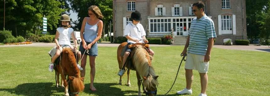 Ponies at Château Camping Domaine de Drancourt, Saint Valery-sur-Somme, Picardy