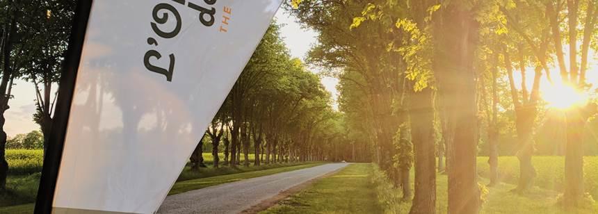 A grand entrance at campsite L'Orangerie de Beauregard, between Tours and Blois, Loire Valley, France