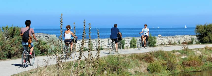 Perfect for cycling - the Atlantic island of Ile de Ré, France