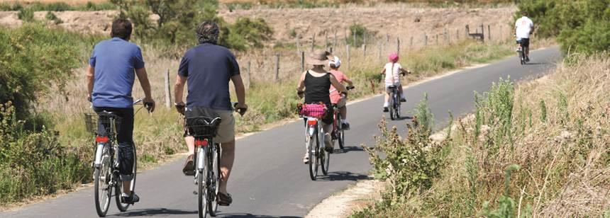 A wonderful area for cycling - the Atlantic island of Ile de Ré, France