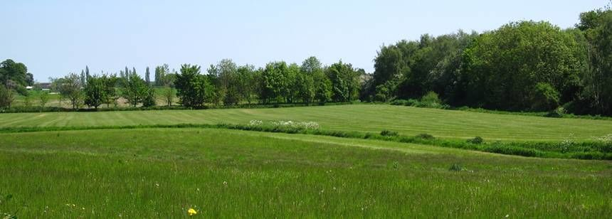 Lovely surroundings at Major Bridge Park