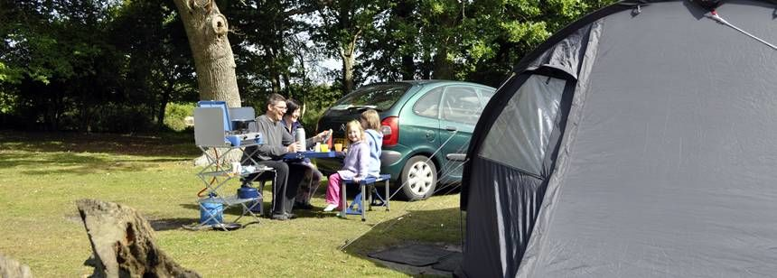 Tent Pitches Ashurst Camp Site New Forest