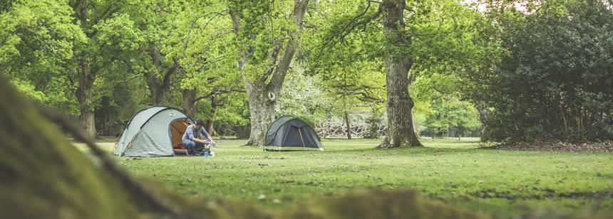 Tent Camper at Ashurst Campsite