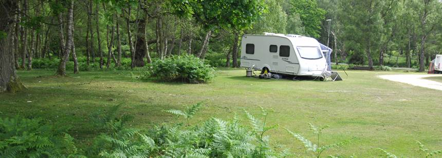 Caravan pitched up among the forest on our Matley Wood Campsite