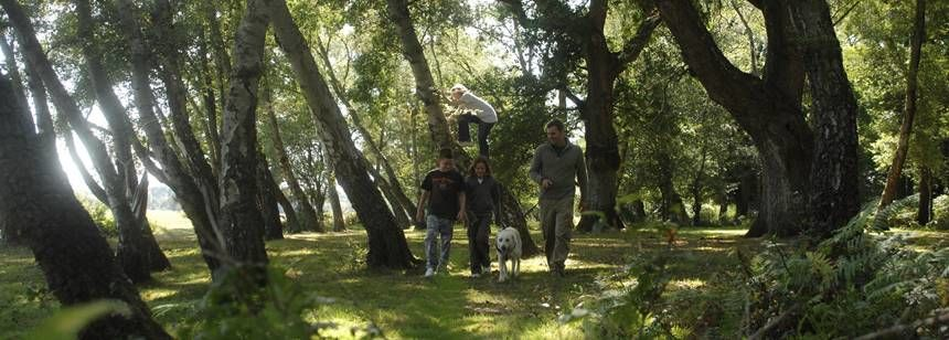 Family enjoying a walk through the forest at Hollands Wood Campsite