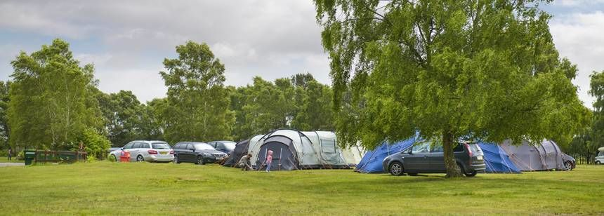 Tents setup at holmsley campsite