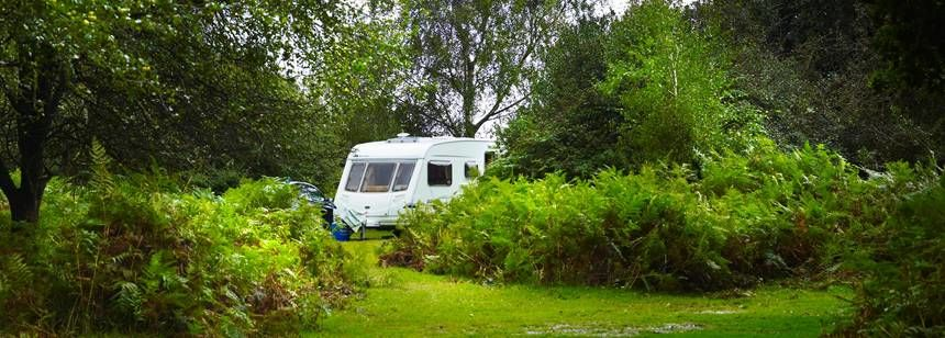 One of the Hidden Grass Pitches at the Ocknell and Longbeech in the New Forest