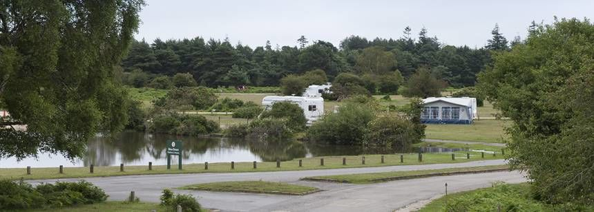 Campervan Pitches in the New Forest With Roundhill Camp Site