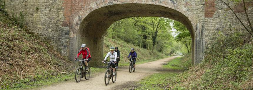 Campers enjoying cycle trails around the New Forest