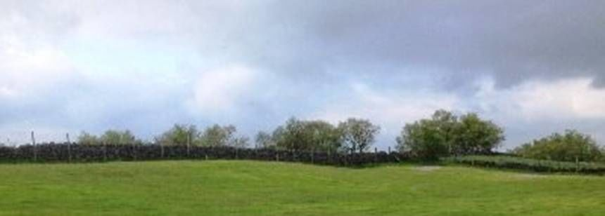 Landscape 118.197 a