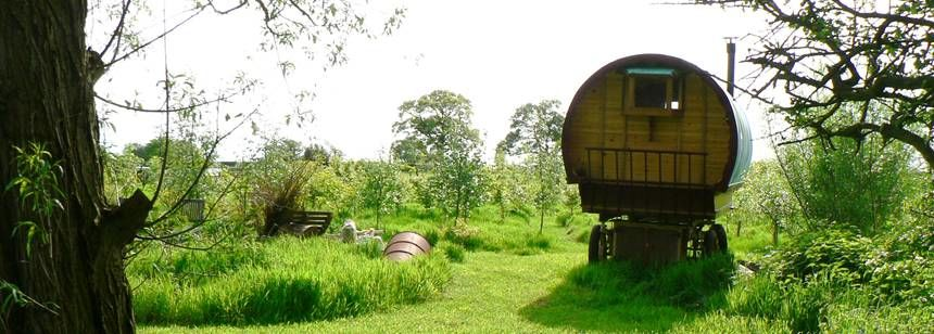 Alternative camping option at Acorns Smallholding