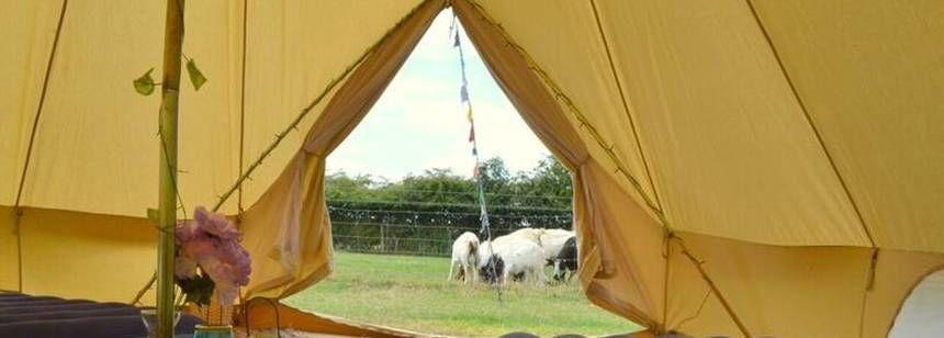Unit on site ... & Cotswold Farm Park Campsite | Explore Gloucestershire from Cotswold ...