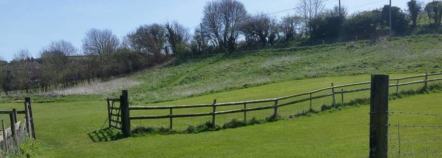 Ashton Field