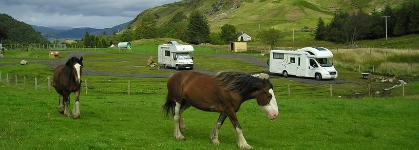 Horses at Lagnaha Farm campsite