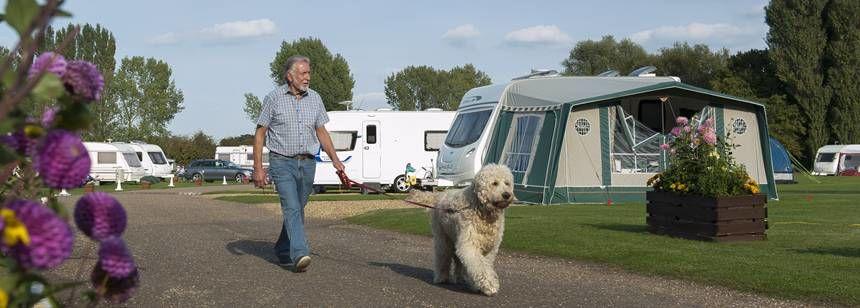 Walking the dog at Cambridge campsite