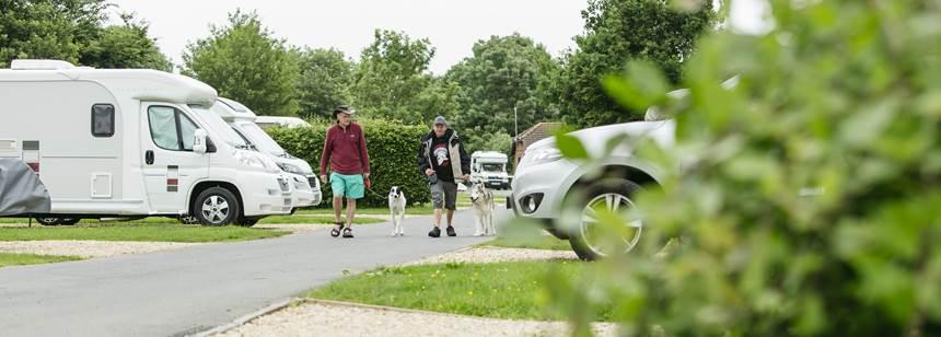 men walking dogs on Devizes Club Site